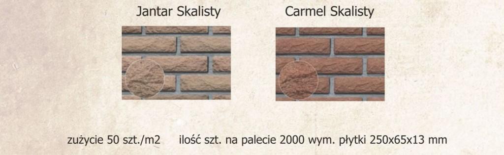 płytki_klinkierowe_ pejzaz32